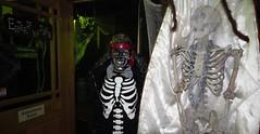 IMG_2001 (2) (Time Grabber) Tags: timegrabber blaenavonrailway blaenavonheritagerailway steamtrains blaenavon railway monsters ghosts zombies vampires clowns witches halloween festival werewolf sinister railwaycarriage