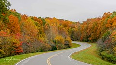 Around the Bend (Catch the Moment Photography) Tags: landscapephotography landscapes fall fallcolors natcheztraceparkway trees wadehooperphotography scenichighway autumnleaves fallleaves tennessee autumn scenic