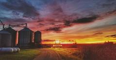 it begins again....(HSS) (BillsExplorations) Tags: harvest farm dusk evening sunset fall autumn combine farmmachinery corn crops nightfall field agriculture slide sliderssunday illinois beginning