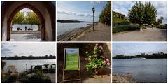 Ausflug in den Rheingau - zoom it (mohnblume2013) Tags: rheingau rhein fluss wein burgen schlösser promenade