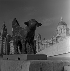 Lamb Banana (The Futurist On Film) Tags: rollei rolleicord tlr mediumformat rollfilm 6x6 square bw rodinal liverpool sculpture architecture