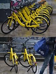 [La Mia Città][Pedala] (Urca) Tags: milano italia 2018 bicicletta pedalare ciclista ritrattostradale portrait dittico bike bicycle nikondigitale scéta 11594