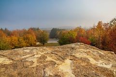 Misty Morning (FocusPocus Photography) Tags: herbst autumn fall wald forest bäume trees felsen rock nebel fog schönbuch aussicht view