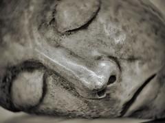 male sleeping head (Mallybee) Tags: oldlens f18 50mm zuiko olympus dcg9 g9 lumix panasonic head statue male sleeping mallybee m43 mirrorless