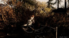 New Nevgilde Opening 1 October (Neaira Aszkenaze) Tags: nevgilde nevgildeforest forest hangout love photo nutmeg shinyshabby shiny shabby autumn fall leaves red yellow green brown sweaterweather sunrise peacful photoop landscaping neascape neascapes eauropean pines pinetree rustic story