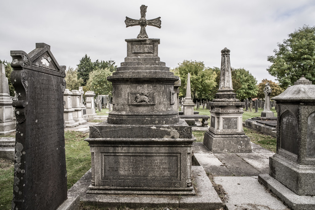 SEPTEMBER 2018 VISIT TO GLASNEVIN CEMETERY [ I USED A BATIS 25mm LENS AND I EXPERIMENTED WITH CAPTURE ONE]-144809
