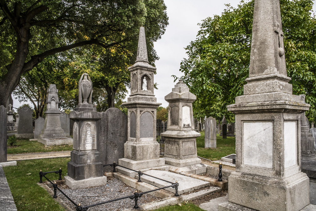 SEPTEMBER 2018 VISIT TO GLASNEVIN CEMETERY [ I USED A BATIS 25mm LENS AND I EXPERIMENTED WITH CAPTURE ONE]-144857
