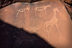 Petroglyphs of Twyfelfontein _4062-2 (hkoons) Tags: burntmountains organpipes southernafrica doleritecolumns africa african boulders khoikhoi namibia painted palmwag twyfelfontein ancient art artist bushman bushmen colors dolerite draw drawings hills landscape old outdoors paint painting panorama petroglyph petroglyphs picture pictures rocks rocky sandstone stone