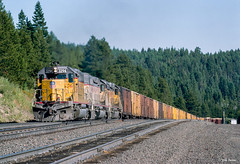 UP 3294 West at Kamela, OR (thechief500) Tags: bluemountains lagrandesubdivision railroads up unionpacific sd402 emd
