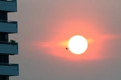 Bangkok sunrise, Thailand 2018 (Dis da fi we) Tags: bangkok sunrise thailand