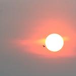 Bangkok sunrise, Thailand 2018 thumbnail