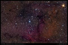 IC1396 - Nébuleuse de la Trompe d'Eléphant (Adrien Witczak) Tags: ic1396 trompedelephant étoilegrenat ciel cielprofond deepspace adrienwitczak astrophotographie astronomie astronomy astrophotography astrophoto espace nébuleuse