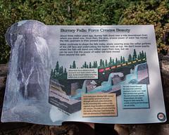 Sign_119888 (gpferd) Tags: descriptivesign sign burney california unitedstates us