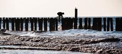 Zeeland-1331 (clickraa) Tags: domburg walcheren zeeland coast beach