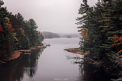 Lake Boshkung (Lawrence D. Griffin) Tags: north lake water fall october leaves color colour travel hike camp cabin fire canoe photography photographer seascape landscape island weather trees forest woods animals outdoors wildlife lawrencedgriffin autumn