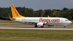 Boeing 737-86J(WL) TC-CPV Pegasus (William Musculus) Tags: airport spotting basel mulhouse freiburg euroairport flughafen eap bsl mlh lfsb tccpv pegasus boeing 73786jwl pgt pc 737800
