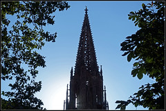 Again without scaffolding (pergi28) Tags: freiburg cathedral münster cathedraltower