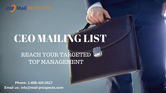 CEO Mailing List (justinehenderson555) Tags: b2b emailmarketing mailinglist ceo database