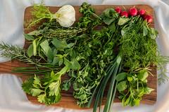 Зелень микс QJ4A0605 (info@oxumoron.com) Tags: салат salad salat сельдерей calariak lauch редиска radies radish чеснок garlic knoblauch