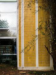 Békés Megyei Könyvtár (LG_92) Tags: bekescsaba library building architecture hungary modern tiles green lines 2018 mobilepics facade october yellow xiaomi leaves autumn