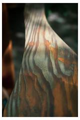 Weathered Wood Grain in Shadow - Chanticleer - Wayne PA_Web 1_Scaled (johann.kisaame) Tags: bokeh botanicalgardens chanticleergardens gardens orange pennsylvania perspective philadelphiasuburbs shadows wavylines wood woodgrain woodsculpture woodstain curves curvinglines distortion pattern rust rustcolor shadow