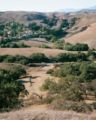 Pastoral and Suburban (markjwyatt) Tags: chinohills california contaxiia sonnar50mmf2 ektar100 hills trees corral animals oaks homes valley canyons film