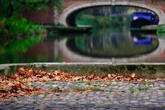 Automne à Toulouse (jpto_55) Tags: automne toulouse feuille feuillemorte canaldumidi reflet pont xt20 fuji fujifilm fujixf55200mmf3548rlmois hautegaronne france