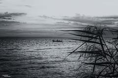 Automn (Vasdokas) Tags: vasdokas greece thessaloniki sea sky clouds bw blackandwhite macedonia sunset