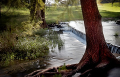 Camp Verde Creek (hightoneguy) Tags: texashillcountry creeks landscapes water