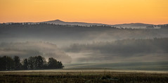(Wöwwesch) Tags: sunrise foggy morning layers colors hills home walking interesting autumn colours lonely silence pastures sky eifel