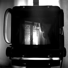 autoportrait - Toyo Field 45A & Rolleiflex 2.8E Planar (JJ_REY) Tags: autoportrait selfportrait essai try toyofield45a rolleiflex28e rollei superpan200 colmar alsace france