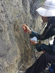 IMG_4187 (bethbartel) Tags: stromboli volcano volcanology eruption