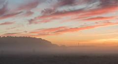 _DSC9487.jpg (thomasresch) Tags: sonneaufgang sun nordhaide panzerwiese nebel hartelholz sunrise sonne