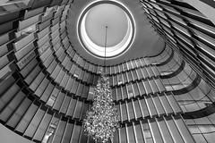 Treppenhaus des Fontenay (petra.foto busy busy busy) Tags: treppenhaus blicknachoben stairs wellenförmig architektur hamburg hotel germany fontenay fotopetra canon 5dmarkiii monocrom schwarz weis kronleuchter