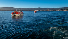 Monterey (harrysonpics) Tags: rubyprincess latexpeditions cruise monterey