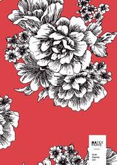 Sum-Paprika-C01 (natexfrance) Tags: sum été paprika fleurs trait grossefleur bicolore