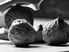 GO NUTS! (Ageeth van Geest) Tags: food walnut walnoot nuts herfst autumn nutcracker macromondays perfectmatch