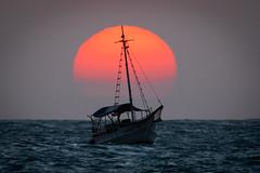 Sunset sailing (Fabiosantos25) Tags: jeri jericoacoara ceara brasil brazil vacation férias canon canon5dmkiv ef100400mmisii flickrtravelaward sunset pordosol ocean oceano barco boat