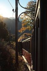 Zahnradlokomotive He 2/2 Nr. 61 der Schynige Platte Bahn SPB mit Taufname Enzian ( Baujahr 1912 - Ex SPB 21 - Wengernalpbahn WAB He 2/2 Nr. 61 - Hersteller SLM Nr. 2236 und Alioth - Lokomotive Elektrolokomotive ) im Berner Oberland im Kanton Bern der Schw (chrchr_75) Tags: hurni christoph oktober 2018 albumzzz201810oktober chrchr chrchr75 chrigu chriguhurni chriguhurnibluemailch schweiz suisse switzerland svizzera suissa swiss albumbahnenderschweiz20180712 schweizer bahnen bahn eisenbahn albumregionthunhochformat thunhochformat hochformat kantonbern kanton bern