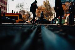 Crosstown Traffic (ewitsoe) Tags: 35mm autumn city fall mood nikond80 street travel poland urban warsaw ground floor rails railway tram traffic silhouete cityscape people pedestrians crossing feel vibe lowdof halloween october