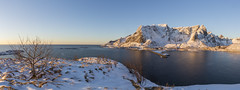 Lofoten, Norway. View towards Reine from Olenilsoya in early morning light (sandergroffen) Tags: arctic background bay blue coast dawn destination europe fjord harbor landmark landscape morning mountain nature ocean olenilsoya outdoor panorama peaceful scenery scenic sea sky sunlight sunny sunrise sunshine tourism town travel vacation village water wide beautiful beauty famous island lofoten nordic north norway panoramic picturesque reine scandinavia seascape view wallpaper