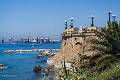09042011-IMGP0171 (Mario Lazzarini.) Tags: taranto porto agave palma rotonda mare sea gru lampioni barche puglia italy paesaggio