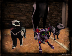 Skelli crew ready to trick or treat (EclairMartinek) Tags: secondlife sl halloween pacifique eclairmartinek jian hellhund