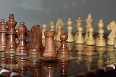 1-52 debut (Josée Ferland) Tags: jeu échecs