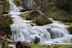 freezing (Paolo Dell'Angelo (JourneyToItaly)) Tags: cascatedellavallesinella madonnadicampiglio provinciaditrento trentinoaltoadige italia ghiaccio waterfall ice winter italy pinzolo