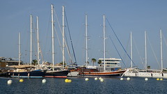 Anchored sailing boats (gerard eder) Tags: world travel reise viajes europa europe españa spain spanien valencia harbour hafen harbor puerto boats boote barcas sailing sailingboats sailingships marina yacht yachting yachtingclub outdoor wasser water sea seascape maritime