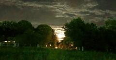Krunk Moon (porterOpz) Tags: wolfchase moon
