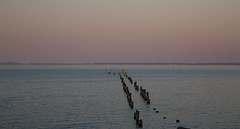 April and Everything After (Keith Midson) Tags: bridport pier oldpier tasmania sunset dusk water sea ocean sky horizon