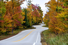 Project 365 - 10/9/2018 - 282/365 (cathy.scola) Tags: wisconsin project365 autumn leaves doorcounty fall curves curvy road