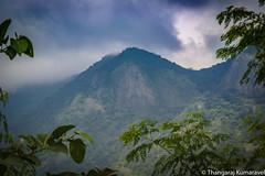 Cloudy Mountain (Kumaravel) Tags: lr leaves walayar tree kerala nature kumaravel clouds coimbatore india kumar mountain